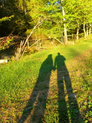 20101001eveningshadows.jpg