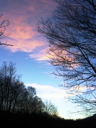 20110226sunsetportrait.jpg